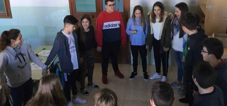 PRÀCTICA DELS ÒRGANS DELS SENTITS I SISTEMA NERVIOS A 3er ESO