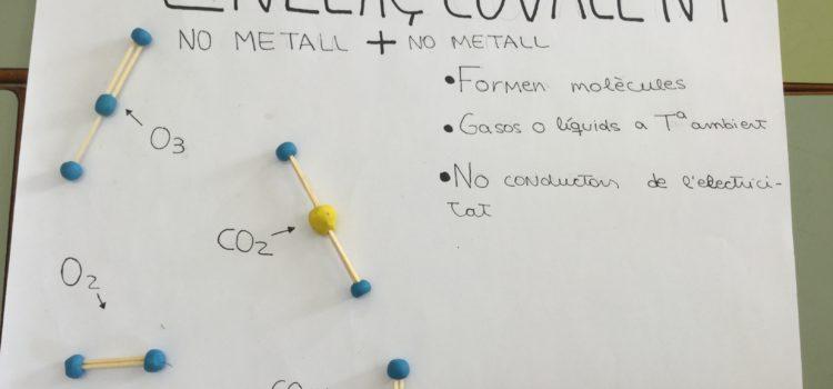 Xarxes i molècules!!
